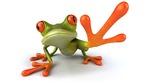 Frog-Wallpaper-65
